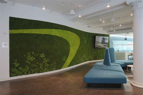 vertical garden preserved plants  interior walls