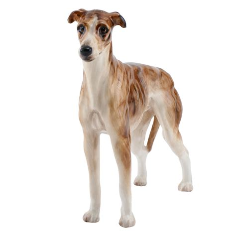 greyhound puppy price greyhound price breeds picture