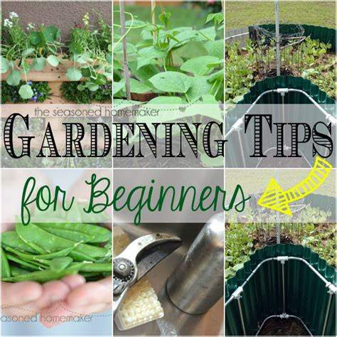 gardening tips gardening tips the seasoned homemaker