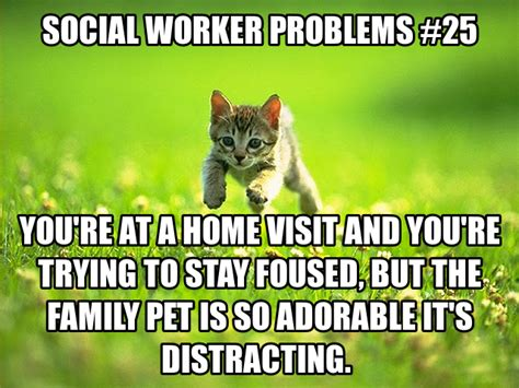 Social Worker Meme - social worker problems family pet pretty sure i m going