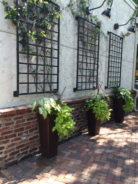Habiller Mur Exterieur Avec Plantes 1001 id 233 es pour habiller un mur ext 233 rieur murs