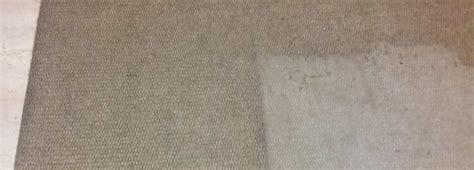 lavaggio tappeti monza servizi di pulizia professionale impresa di pulizie