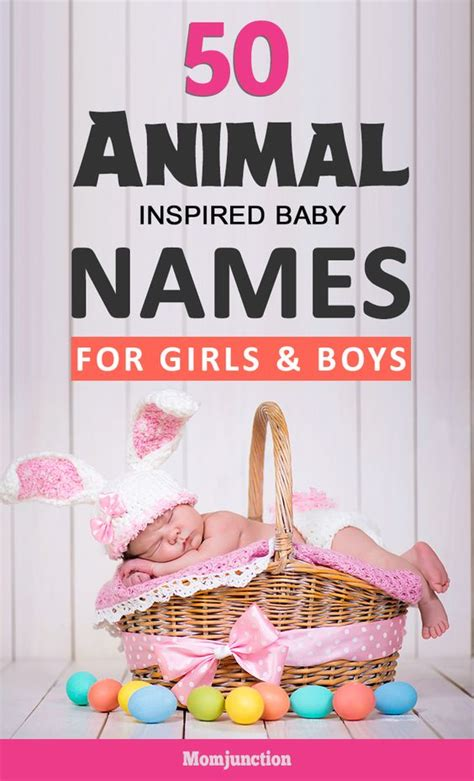 libro amazing animal babies 50 amazing animal inspired baby names for girls and boys we names for babies and animals