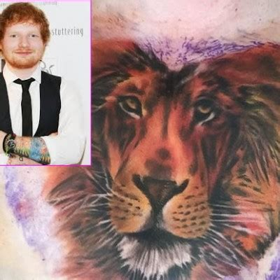 ed sheeran defends lion tattoo meghan mabey author at popstartats