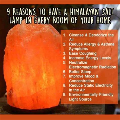 what does a himalayan salt l do himalayan salt ls what the heck are they what do they