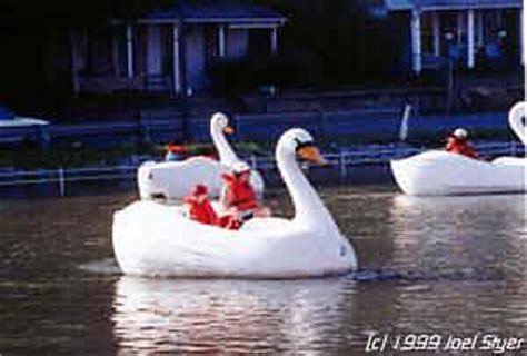 swan boats cedar point pictures of dorney park at ridezone