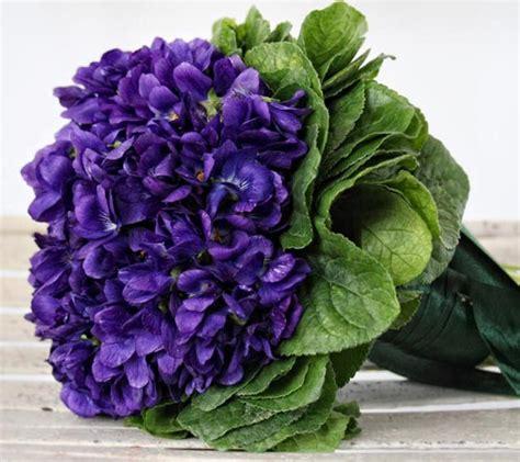 foto di fiori viole un mazzolin di viole