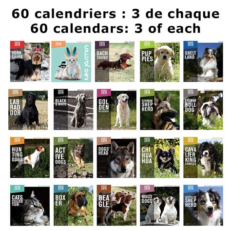 Calendrier Martin Sellier Race Calendrier Chien 2018 Martin Sellier