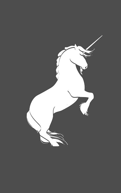 Free vector graphic: Unicorn, Silhouette, Rearing, Horse