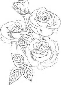 roses coloring pictures roses flower coloring pages