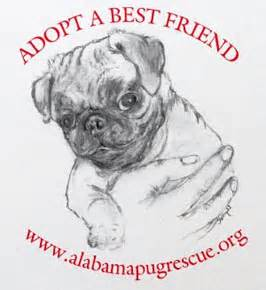 pugs adoption alabama shop for pug rescue pugs dogbreed gifts