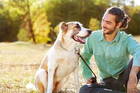 dogs and humans reason 1 quantitative anthropology