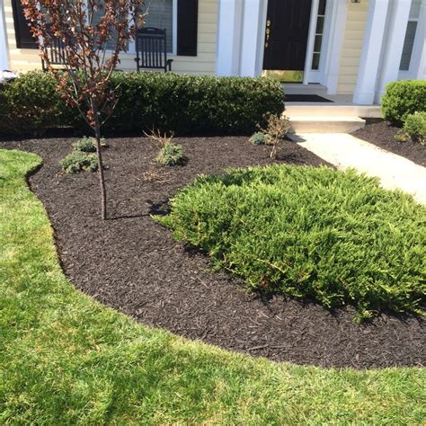85 Bags Of Black Mulch With Bigro On Landscape Black Landscaping