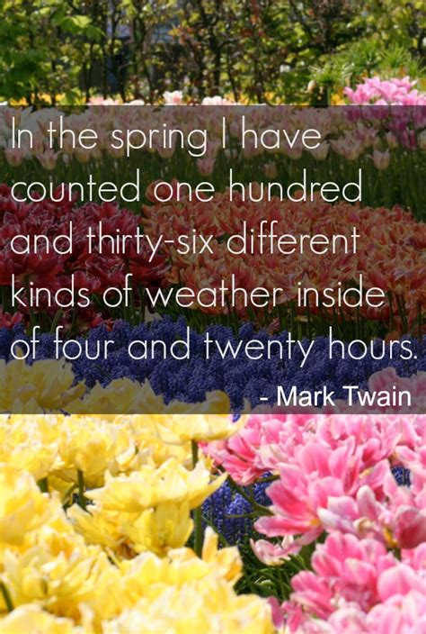 what is a spring inspirational spring quotes fun quotes for spring