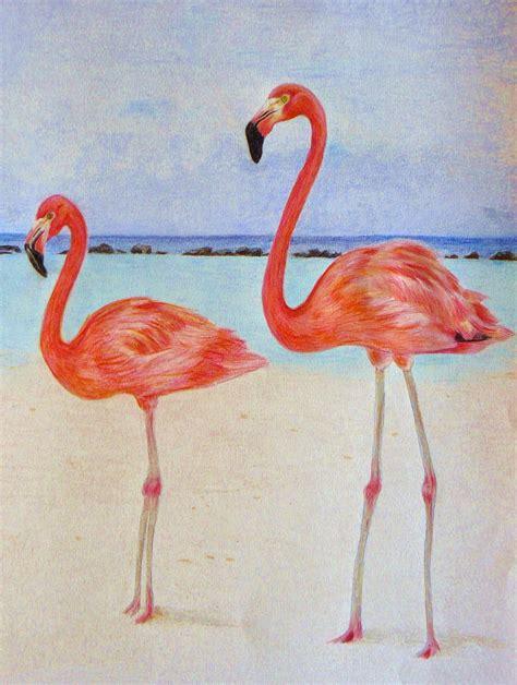 imagenes animal flamenco flamencos los dibujos de roseta