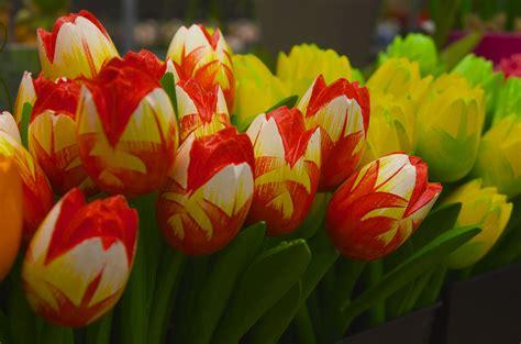 fiori finti fiori finti post numero 100 rodocarda