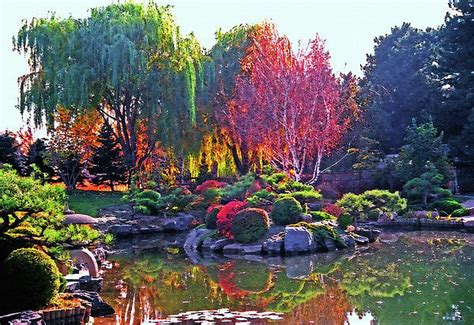 Denver Botanical Gardens Hours Wonderful Denver Botanic Gardens Denver Botanic Gardens Hours Alices Garden Gardensdecor
