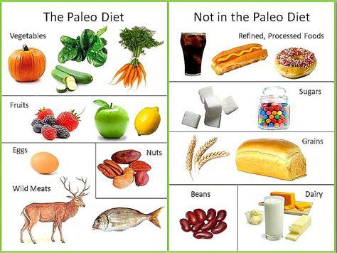 Paleo Diet Detox Period by The Paleo Diet Positivemed
