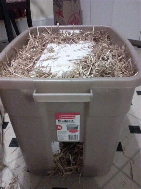 feral cat shelter styrofoam cooler within plastic