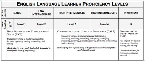 Fleshing Out Language Proficiencies In by Language And Proficiency Levels Coursework