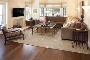 Livingroom Area Rugs Living Room Throw Rugs Decor Ideasdecor Ideas