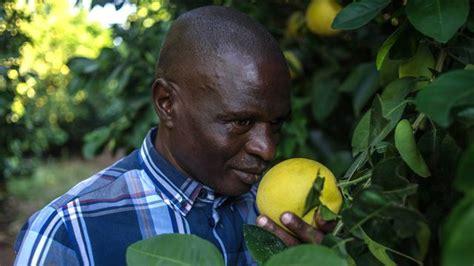 odeur d 礬gout dans la en afrique du sud le retour 224 la terre r 233 ussi des