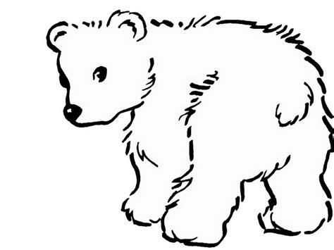 Polar Bear Color Page Az Coloring Pages