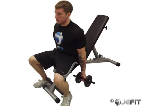 Dumbbell Chair Exercises by Dumbbell Seated Curl Exercise Database Jefit Best