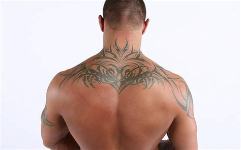 randy orton tribal tattoo design randy orton with