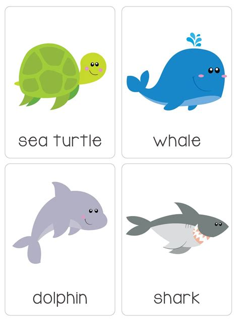 ocean animal flashcards our set of printable quot under the ocean flash cards quot are a