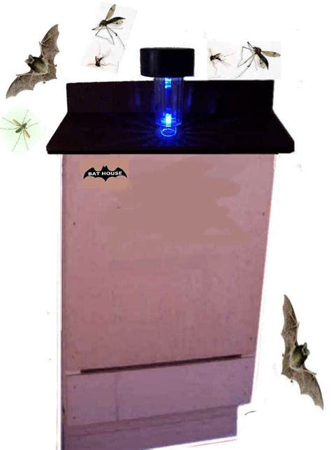 pipistrello le con luce solare bat box nido pipistrelli o pipistrello ebay