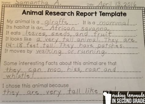 Parent Letter For Diorama Lemonade In Second Grade Animal Research Projects