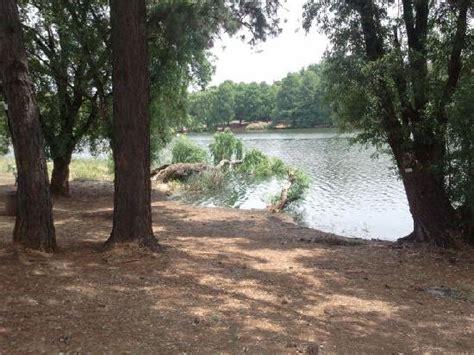 Emmarentia Botanical Gardens Dam Picture Of Johannesburg Botanical Gardens And Emmarentia Dam Johannesburg Tripadvisor