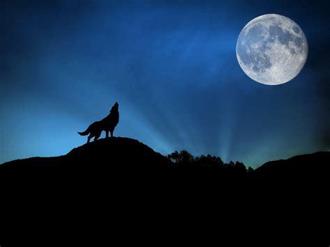 imagenes romanticas de la noche banco de im 193 genes 23 fotograf 237 as in 233 ditas de paisajes y
