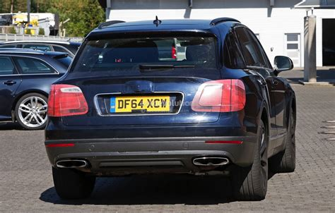 bentley camo 2016 bentley bentayga suv spotted nearly camo free