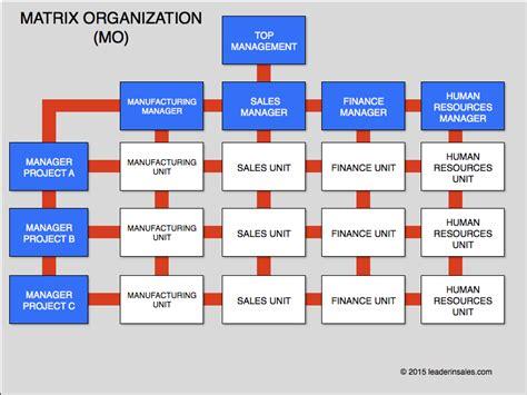 essay structure matrix organizational structure wikipedia