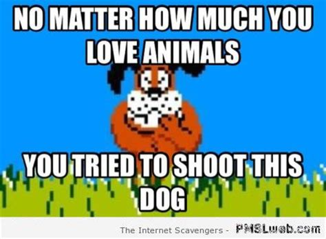 Duck Hunting Meme - funny duck hunting