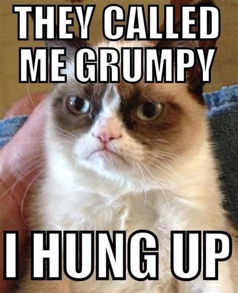 Best Grumpy Cat Meme - called me grumpy grumpy cat meme