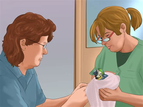 3 ways to care for wild baby birds wikihow