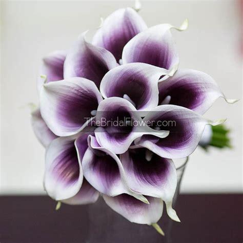dark purple and white calla lily small wedding bouquet