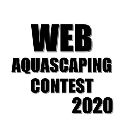 iiac aquascaping workshop step   nature