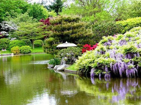 lotus garten hagen divagar sobre tudo um pouco jardins japoneses