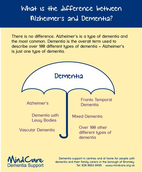 dementia or alzheimer s a s guide to home care from the early signs and onset of dementia through the various alzheimer stages books what is the difference between alzheimer s and dementia