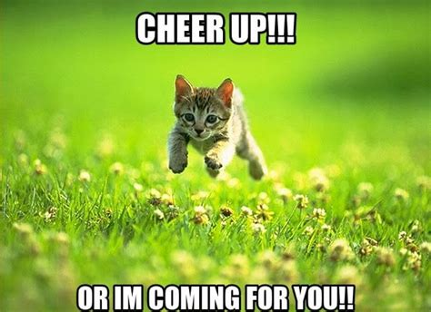 Cheer Up Meme - top 25 cheer up meme s that ll instantly lift your mood