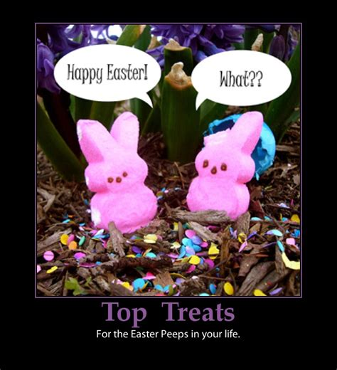 Happy Easter Meme - funny happy easter quotes sayings image quotes at