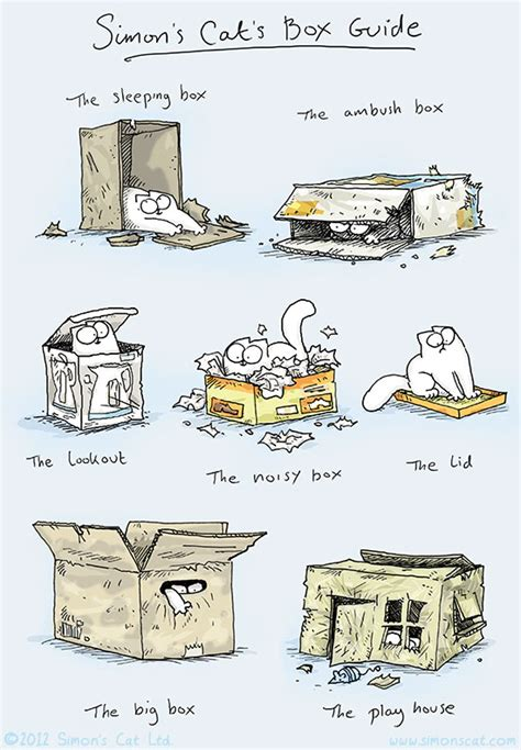 Simon S Cat Guide To Simon S Cat Guide To simon s cat box guide taildom