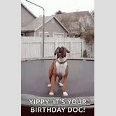 beyonce-birthday-gif-tumblr