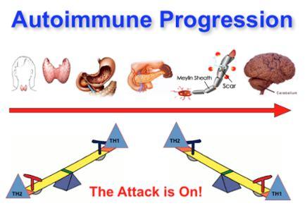 innate immunity a question of balance ora why does autoimmune thyroid cause stubborn hypothyroid