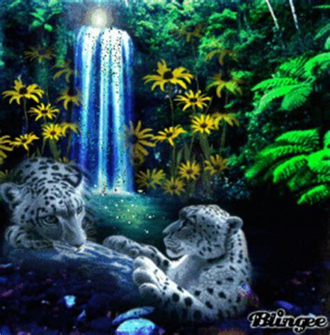 imagenes lindas de la naturaleza fotos animadas naturaleza para compartir 107488809