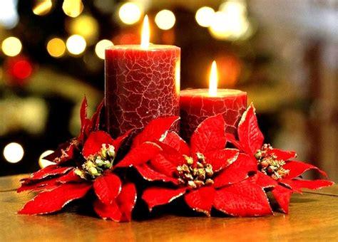 imagenes flores de nochebuena fotos de nochebuena imagui